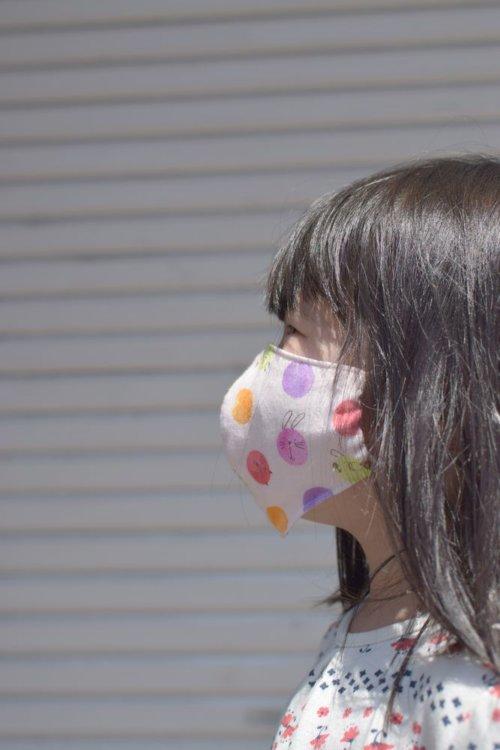 3D布マスク